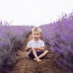 lavender-family-1-w