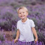 lavender-family-6-w